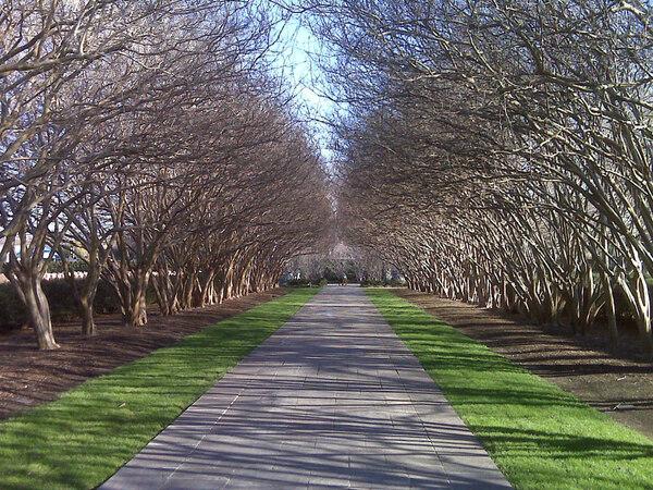 Dallas Arboretum and Botanical Garden, USA