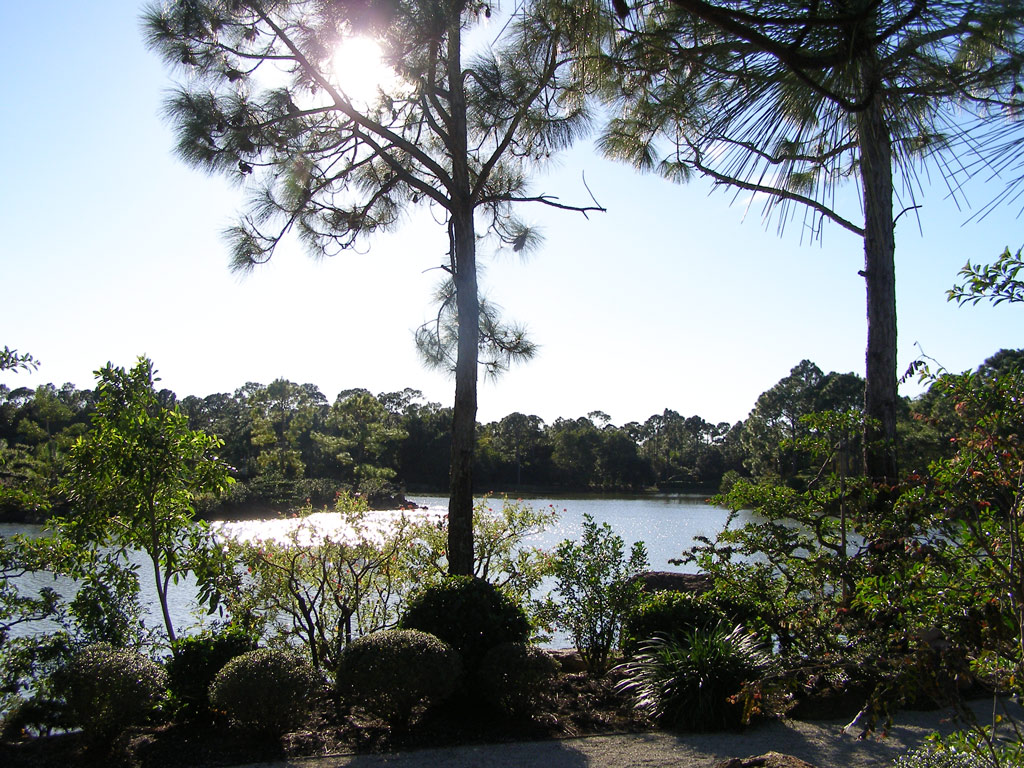 The Morikami Museum And Japanese Gardens, Florida