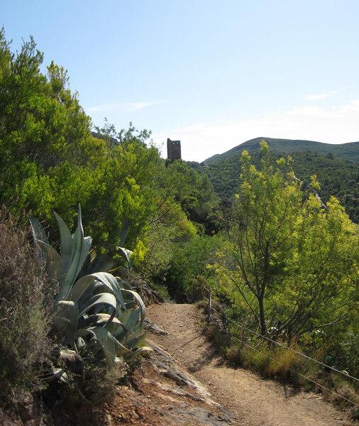 View, Jardin Méditerranéen de Roquebrun