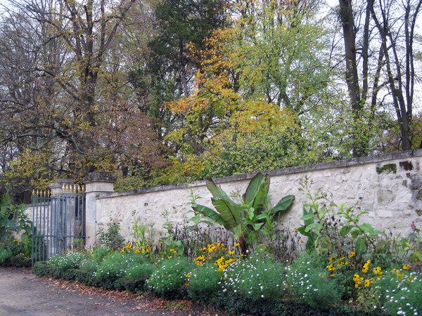 Malmaison Garden