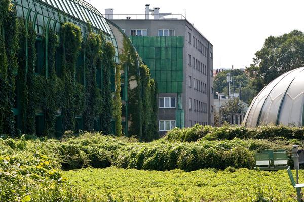 Warsaw University BUW Library Garden