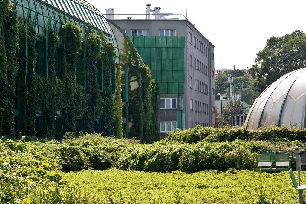 Warsaw University Library Roof Garden