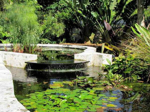 Pond, The Kampong
