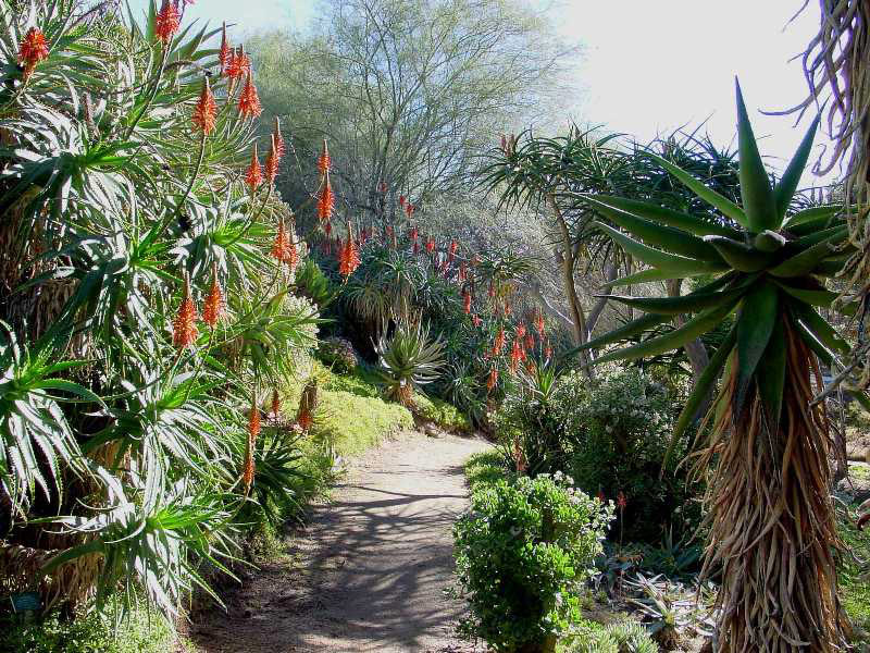 University Of California Riverside Botanic Garden