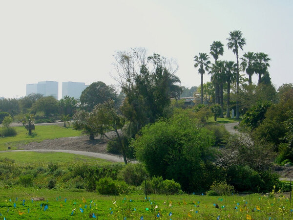 University of California Irvine Arboretum