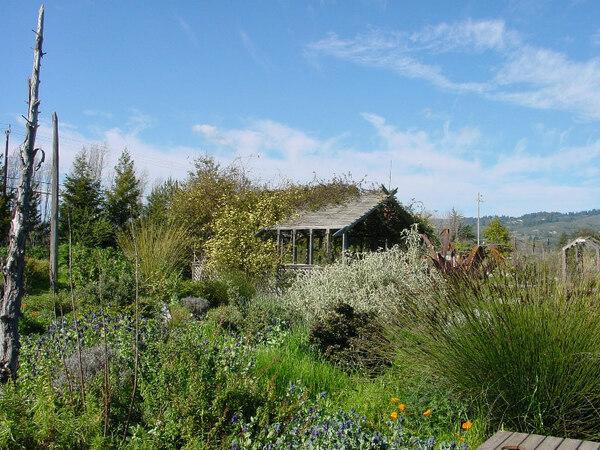 Sierra Azul Garden