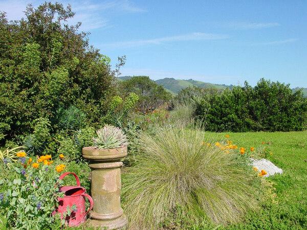 Sierra Azul Garden, Watsonville
