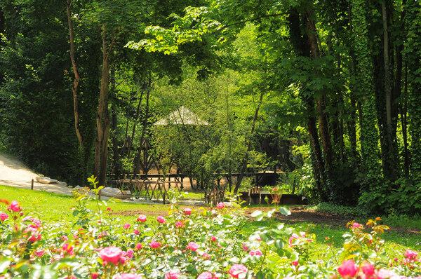 Jardin de Léonard