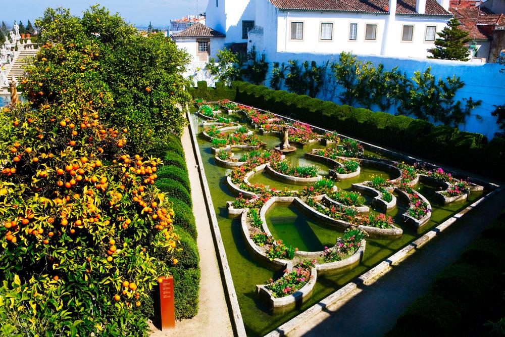 Castelo Branco Portugal  city photo : Castelo Branco, Portugal