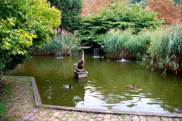 Lake, Stadtgarten Freiburg