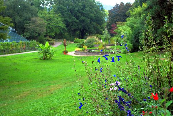 Freibug Uni Botanic Garden