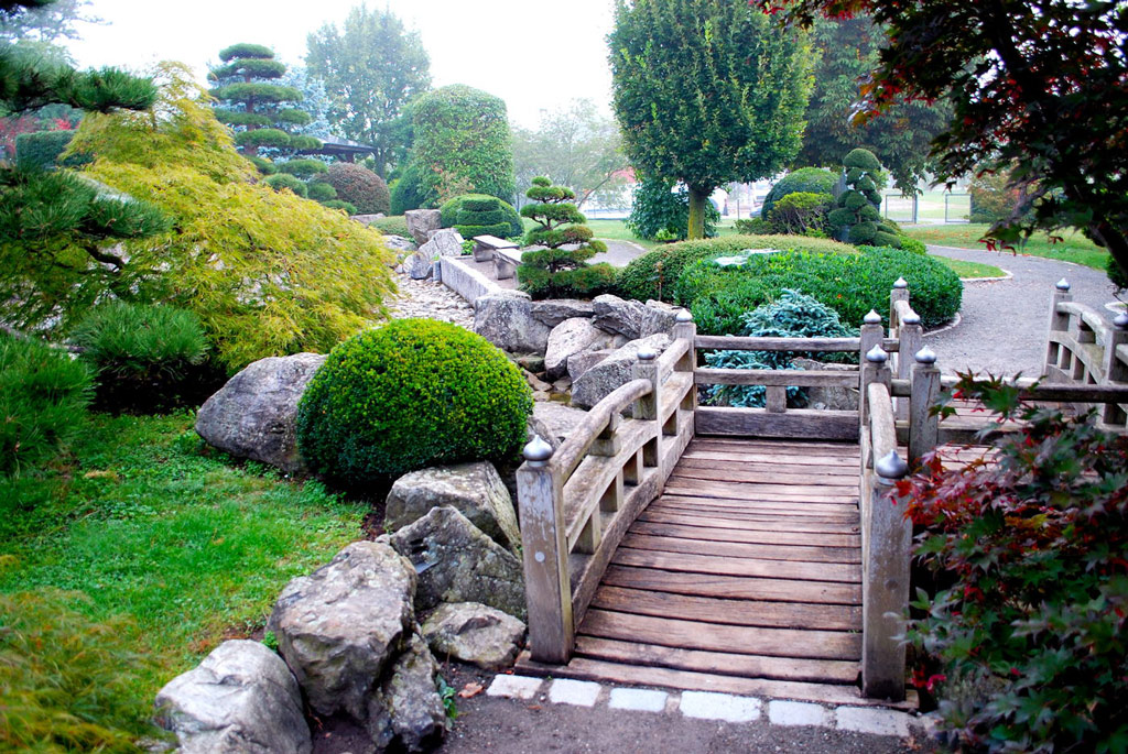 Japanese garden freiburg for Pictures of backyard gardens