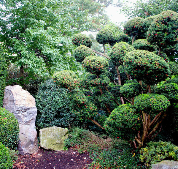 Japanese Garden, Leisnerstrasse