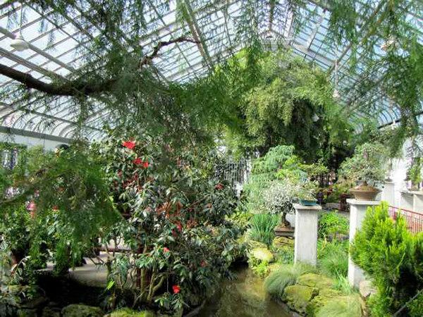 Montreal Botanical Garden, 2010
