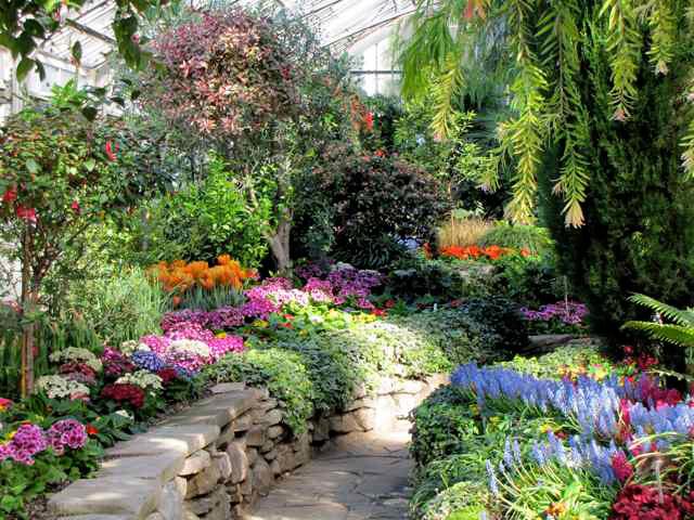 Allan gardens conservatory for Gardening tools toronto
