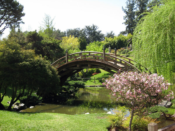 Bridge, Japanese Garden
