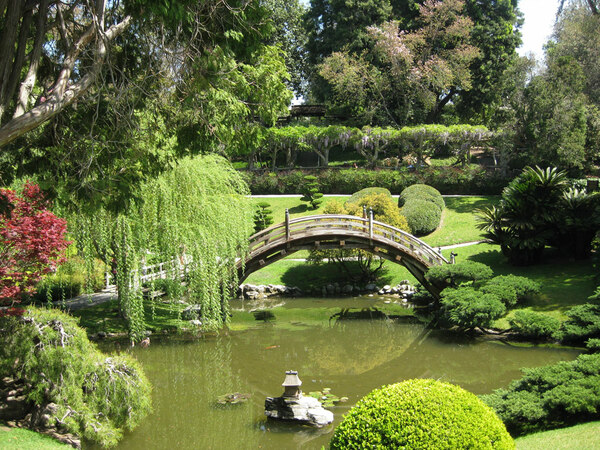 Huntington botanical gardens for Garden pool tokyo