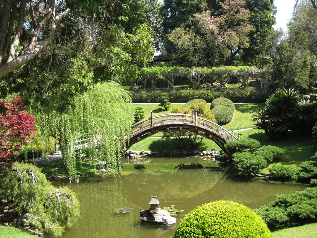Pond, Japanese Garden