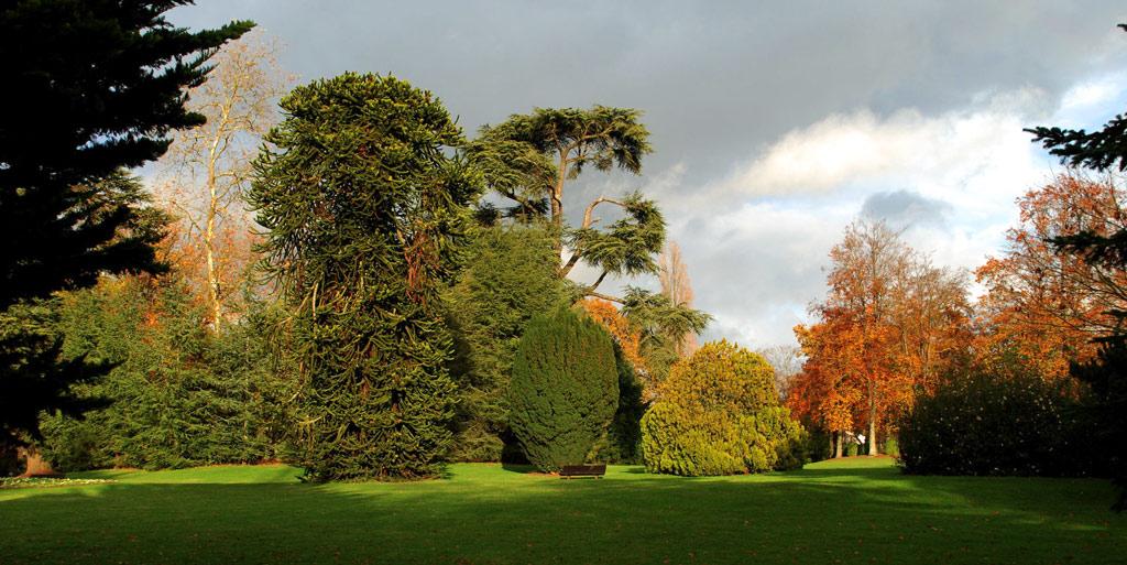 Le Jardin Du Parc De Vitr U00e9