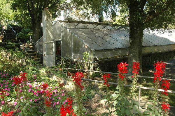 Greenhouse, Deep Cut