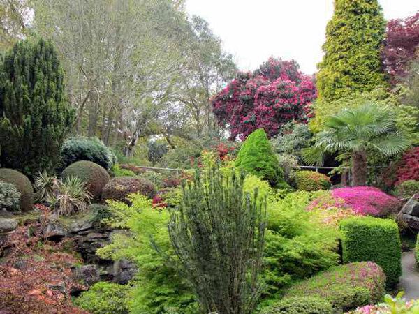 Leonardslee Gardens, 2010