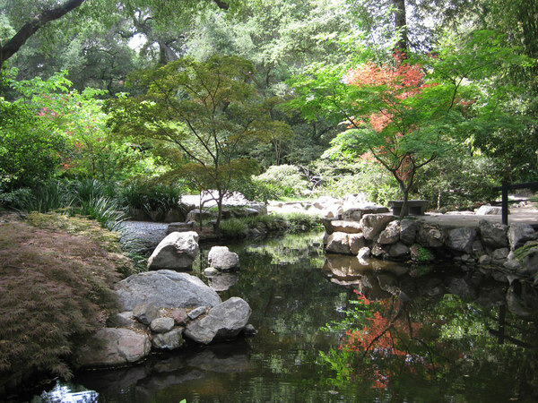 Pool in Japanese Garden