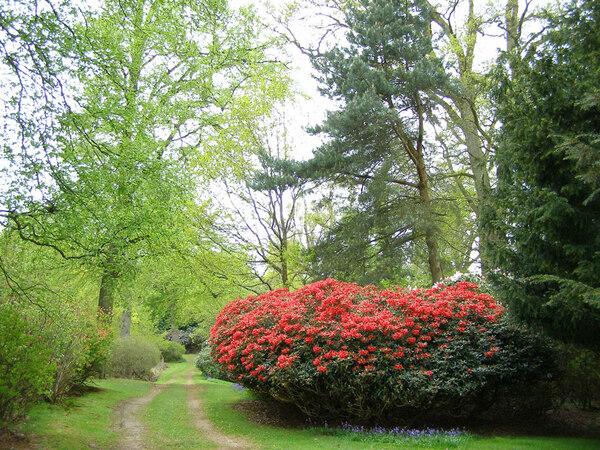 Bowood, Spring
