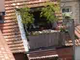 Medium roof garden prag original