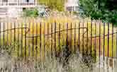 Medium fence atlantique  original