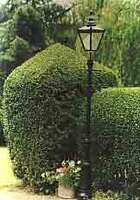Medium topiary light original