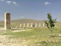 Medium passargadae garden original