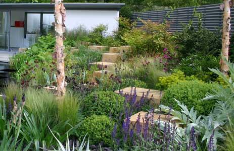 Garden designs at the rhs chelsea flower show 2005 for Chelsea garden designs