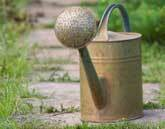 Medium watering can2 original