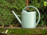 Medium watering can3 original