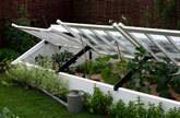 Medium cold frame original