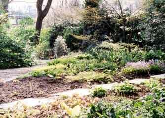 Bosvigo garden1