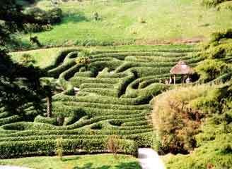Glendurgan garden1