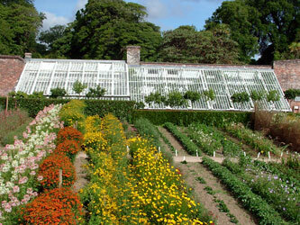 Heligan gardens vinery