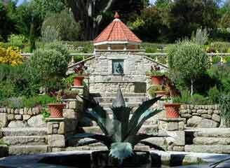 Tresco garden1