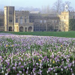 Forde abbey garden