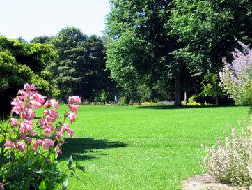 Pines garden kent