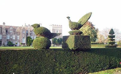 Grimsthorpe castle garden