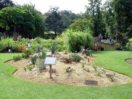 Horniman african garden