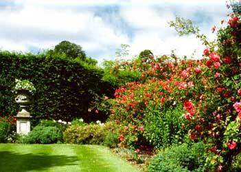 Deene park garden1