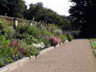 Harewood house garden1