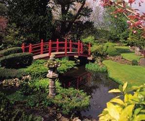 Japanese Gardens At The Irish National Stud