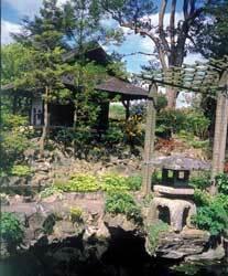 Japanesegardens ireland