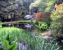 Barguillean garden scotland