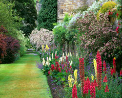 Falkland palace garden nts