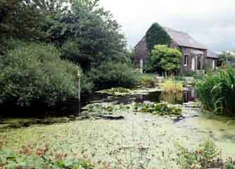Little sparta garden1